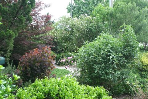 may-1-2009-wilson-garden-tour-092