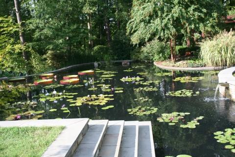 Duke Gardens 019