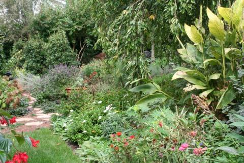 Part of Mixed Border into Herb Garden